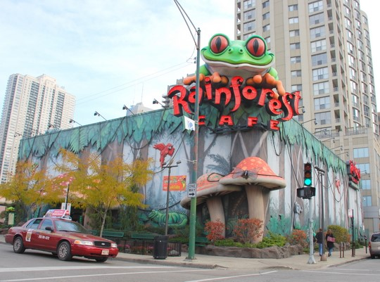 Rainforest Cafe Chicago Downtown